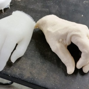 My hand on the left, Mickey's hand cast on the right